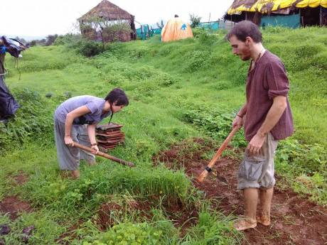 foreigners-helping-in-the-farm